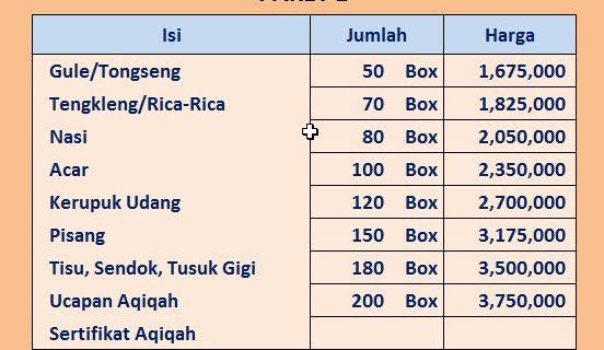 PAKET NASI BOX AQIQAH SOLO